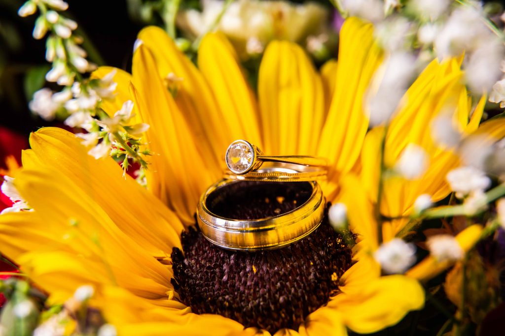 close up of engagement and wedding ring on sunflower